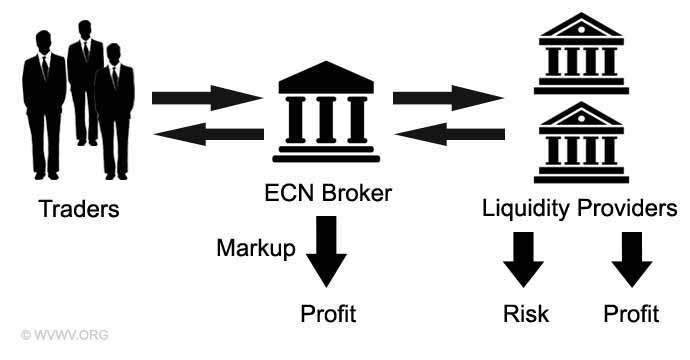What does ecn stand for in forex